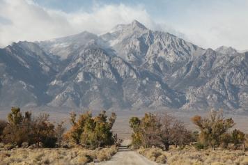 Road within Manzanar