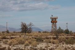Watch Tower at Manzanar