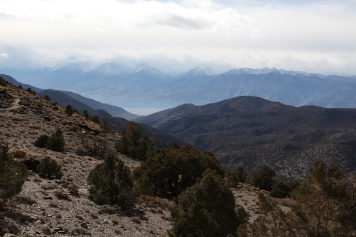 View into the Owens Valley from the White Mountains