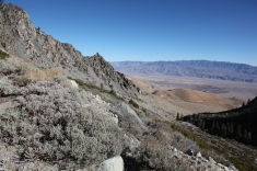 Looking into the Owens Valley from the Road to Onion Valley