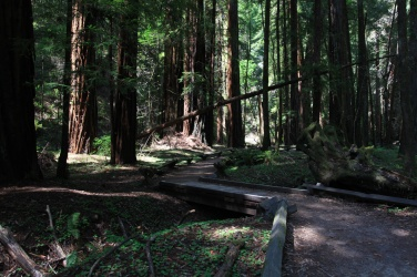 Pioneer Nature Trail