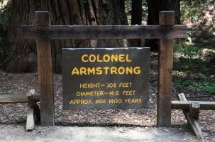 Colonel Armstrong Sign