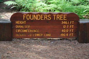Founders Tree Sign