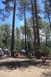 Art fair in the park at Idyllwild