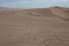 Walking across the dunes