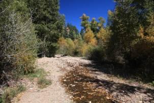Cimarron Canyon State Park