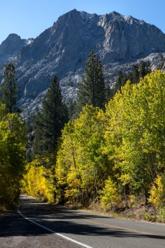 Autumn on June Lake Loop