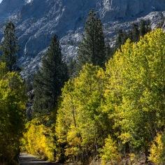 Autumn on June Lake Loop