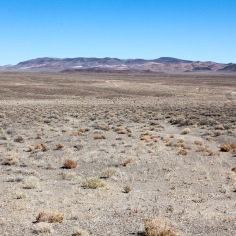 Wide-open western Nevada
