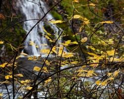 Autumn at McArthur-Burney Falls