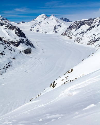 The Aletsch Glacier from Eggishorn